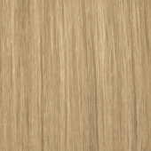 palette_com_natural_baseline_natural_color_light_blonde_170x170